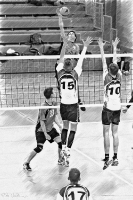 Volleyball_131
