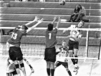Volleyball_47