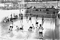 Volleyball_5