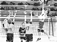 Volleyball_74