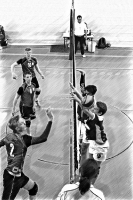Volleyball_7